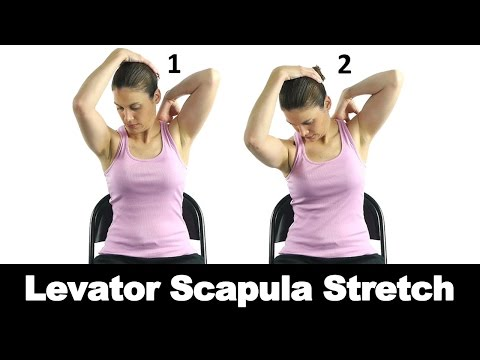 Levator Scapulae Active Stretch - YouTube
