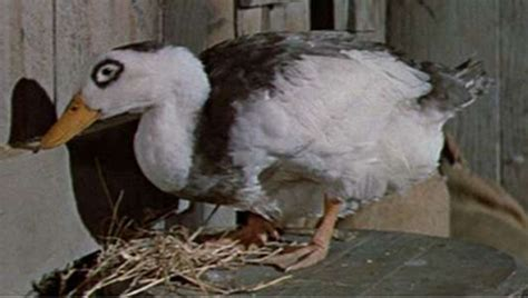 Chosen One of the Day: Gertrude the Duck from Journey to